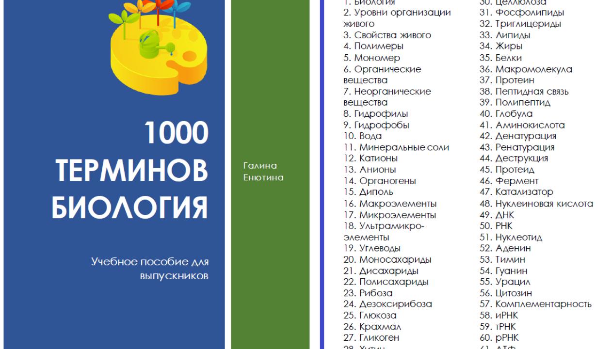 1000 терминов